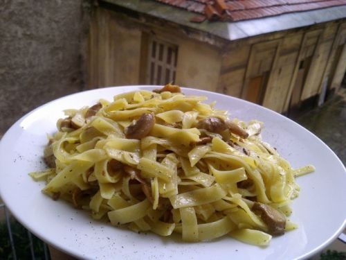 Greek pasta (hilopites) with mushrooms, ouzo and thyme