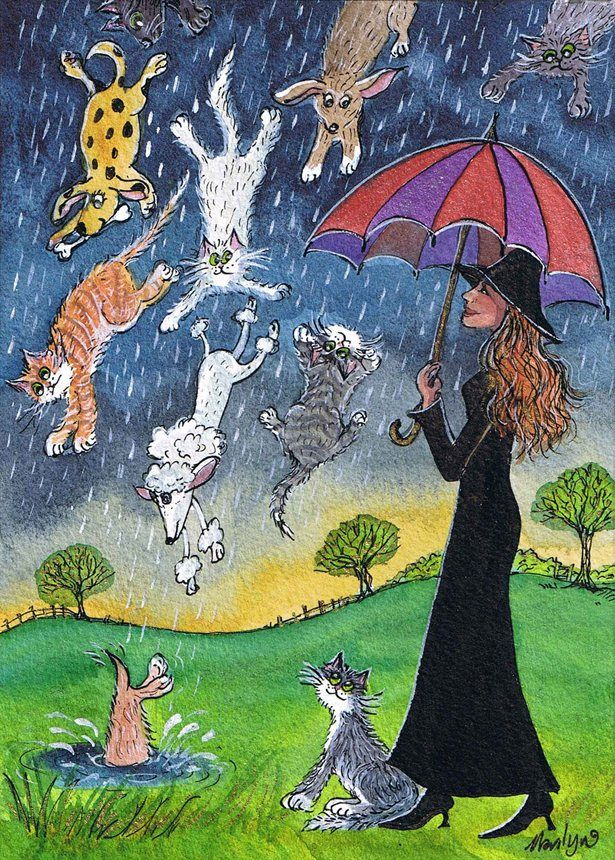 Raining Cats and Dogs © Marilyn's Miniatures | Singing In ...
