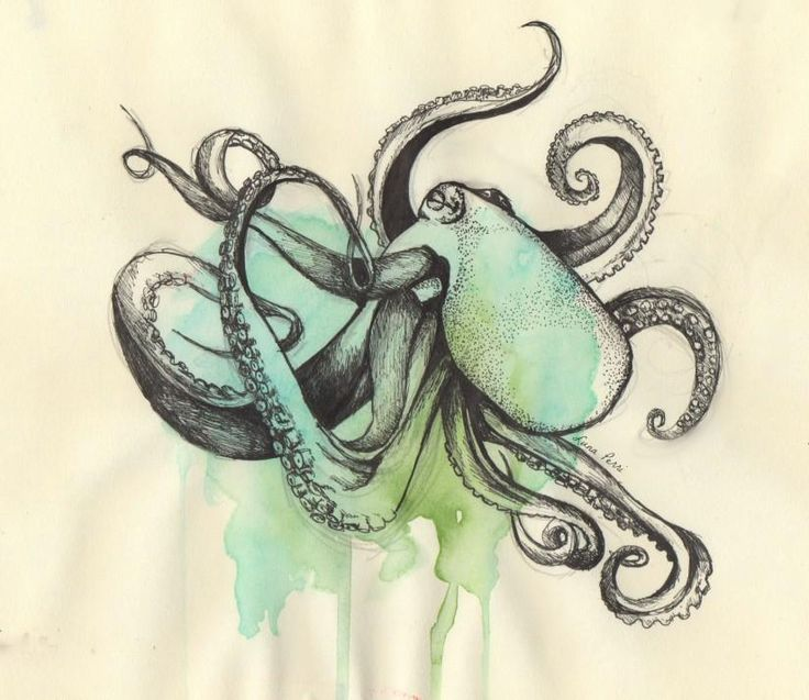 64 best images about sea inspired on pinterest print for Simple octopus drawing