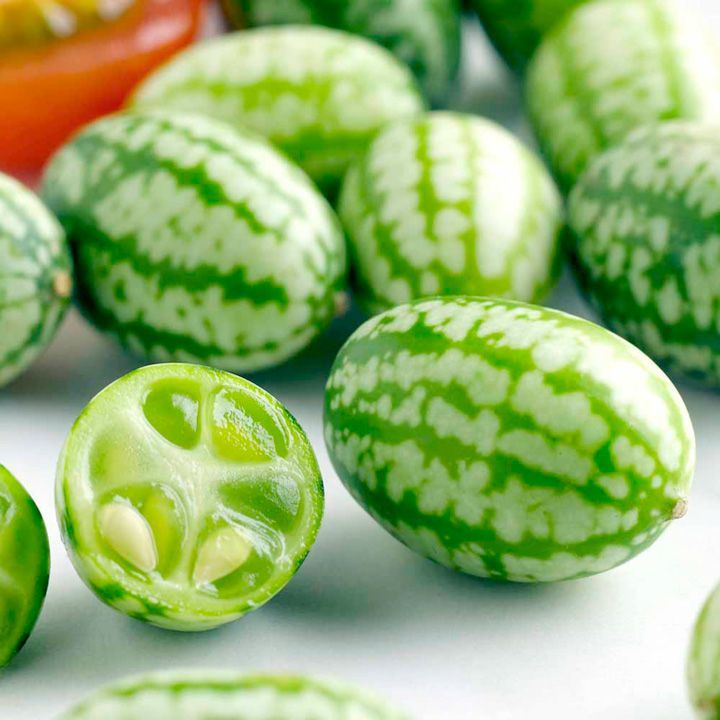 Cucamelons are the cutest fruit ever! Just look at them – they are like tiny watermelons that taste like a slightly tangy cucumber. We are certain that once you look at them you will want to have them in your garden. And it is a true delight to grow them as they are so easy to grow – even for beginners.