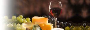 Home | The Organic Wine Company