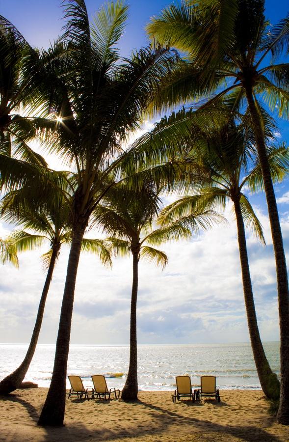 Palm Cove, Queensland.