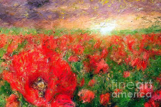 Rafael Salazar - Abstract Landscape of Red Poppies