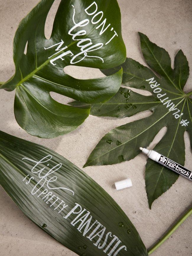 DIY : se donner le mot sur fond végétal Maplantemonbonheur.fr #maplantemonbonheur