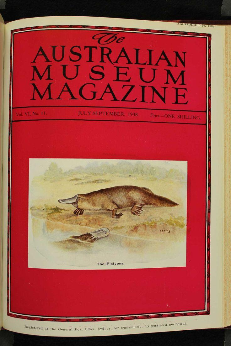 Australian-Museum-Magazine. The White Platypus. Illustrator: Ethel King. http://australianmuseum.net.au/Australian-Museum-Magazine-1921-1942/