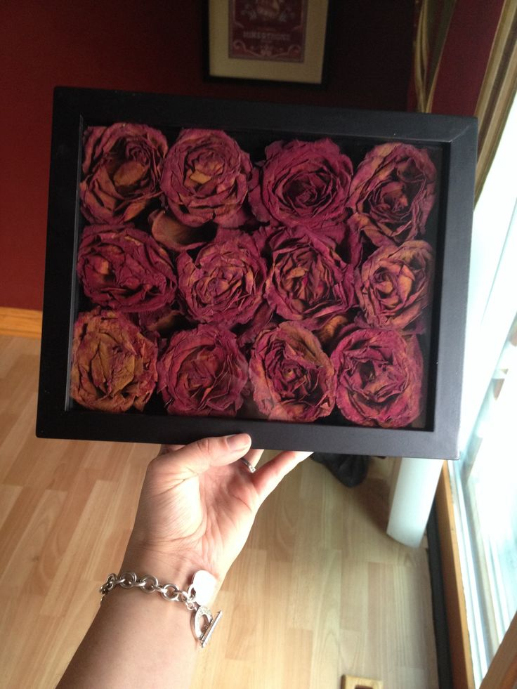 Dried out roses by hanging them upside down and then placed them in a shadow box from Hobby Lobby (on sale for $12). To get a fuller effect I lightly separated the petals to expand the flower for a full bloom instead of just making them look too smashed.