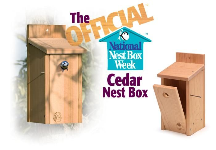 Image: The Official™ Cedar Nest Box