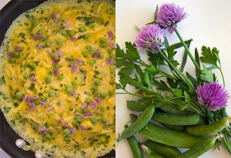 Omelet: Perfect Omelettes, Flowers Omelettes, Herbs Omelettes, Omelettes Recipes, Omelette Recipe, Sweet Peas, Summer Herbs, Omelettes Aux, Fine Herbs