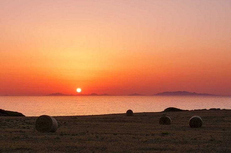 asinara sunset by rikifoto