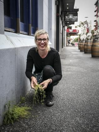 KATE Grigg finds one of her favourite foods in a mound of dirt in the carpark of an empty building on Waymouth St.