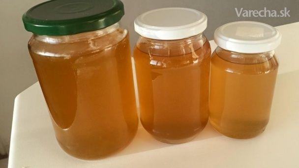 Púpavový med  (fotorecept)