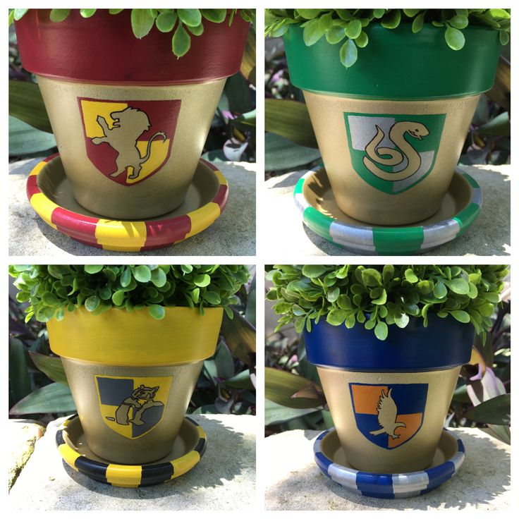 Harry Potter Hogwarts House flower pots  https://www.etsy.com/shop/FlourishAndPots