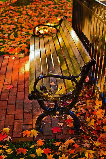 Is there anything better than just sitting on a bench and watching the leaves fall? #FallCatalogs
