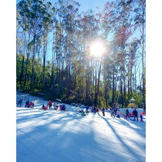 Corin Forest, located in the Tidbinbilla Mountain Ranges just 45 minutes from the heart of Canberra, is a year-round alpine adventure.