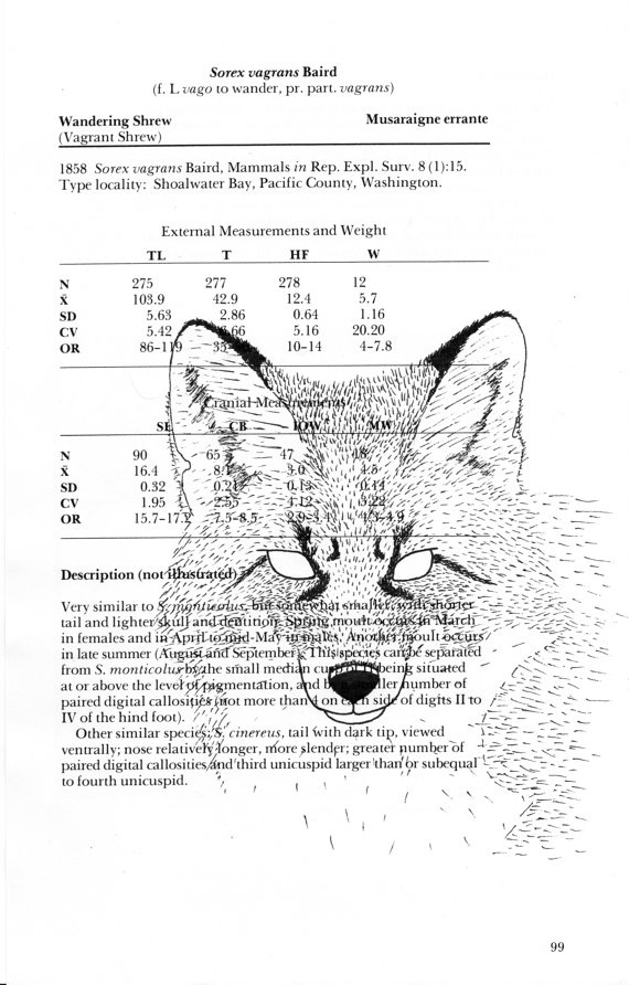 Colourless Fox print on page of the Handbook of Canadian mammals by CooperHaydenn, $10.00