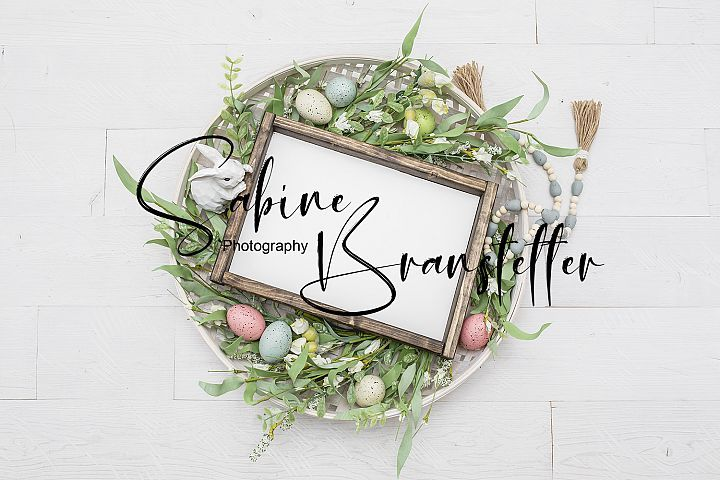 Rectangle Wood Sign Styled Stock Photography Hopping Into Spring Mockup-Digital File Easter Wood Sign Mockup