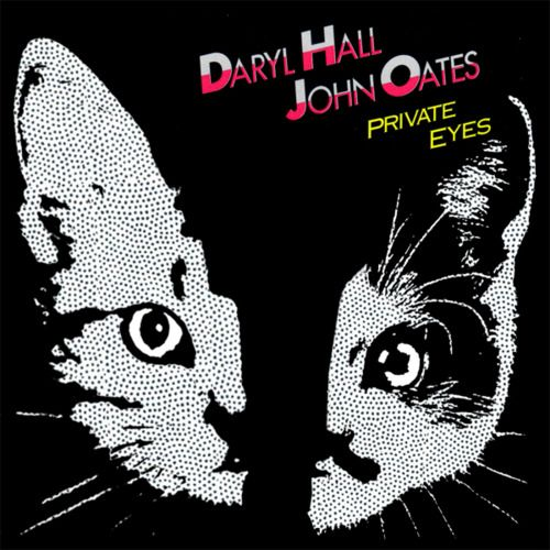 108 best images about famous album covers with cats on pinterest posts cats and willie nelson. Black Bedroom Furniture Sets. Home Design Ideas