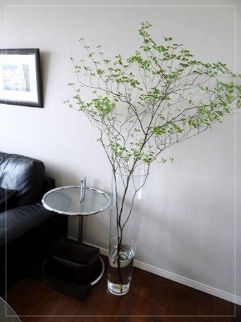 ガラスのフラワーベースと相性抜群の枝ものグリーン。大きなグリーンは空間の主役になり、リビングはより癒しの空間になります。