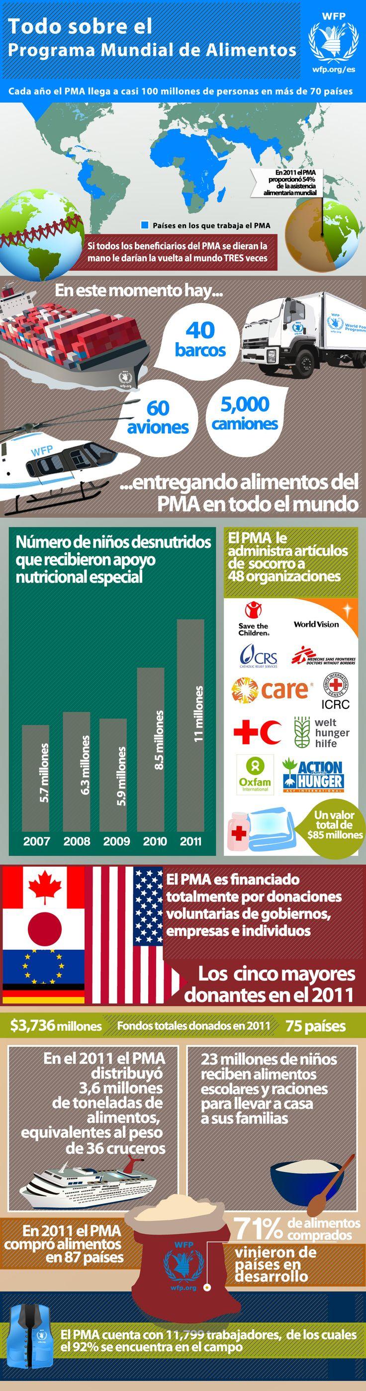 Programa Mundial de Alimentos #Infografía #ONG