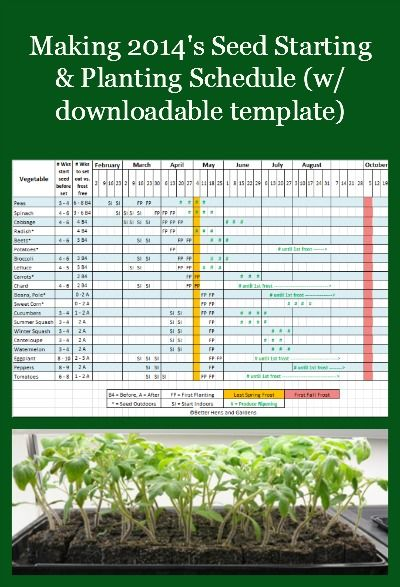 Example, instructions, and an Excel template for creating a 2014 vegetable garden seed starting and planting schedule for the spring