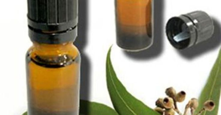 We are the capable Eucalyptus Oil Manufacturers that are known for providing pure and organic range of products to the global market areas. We are passionate about our work and delivering the natural products to our esteemed customers. We offer the quality tested mint products at the competitive prices. Give us a call now or place your orders through the enquiries today.