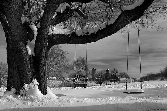 Snow Covered Swings by Mark Van Scyoc  Black and white photo of snow covered swings on a cold December morning in Lancaster County. Silos on a nearby farm can be seen in the distance.  The region was blanketed with over a foot of snow the day before and transformed everything into a work of art.  Located on Hunsecker Road near Zook's Corner. (Between Leola and Lancaster, PA)  (Canon Rebel – XT)  Featured in: Rural Around The Globe – Dec. 09: Photos, White Photo, Hunsecker Road, Van Scyoc, December Morning, Nearby Farm