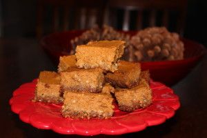 These Paleo Pumpkin Pie Bars are super easy and very delicious! Make them for your traditional Thanksgiving feast or bring them to your work or children's holiday party. They are THAT good!