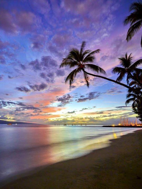 Maui, Hawaii | Christopher Egan Galleries