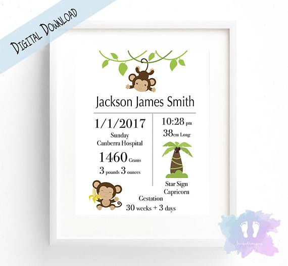 Monkey Birth Announcement Wall Art  Nursery Wall Art