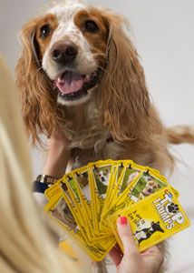 Dogs Trust Launches Dog Top Trumps. On sale for £4.99. All proceeds will go towards the care of their rescue dogs.