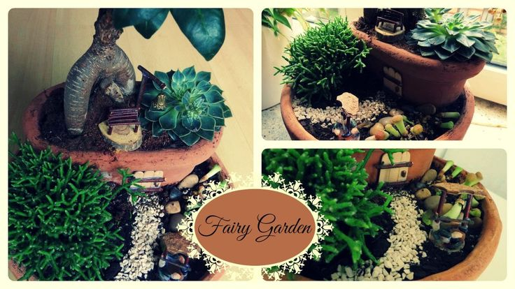 266 best diy miniature gardens fairy gardens. Black Bedroom Furniture Sets. Home Design Ideas