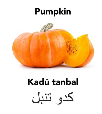 Lazy pumpkin and Englisi Farsi