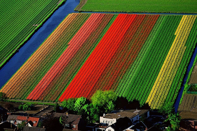 Magnificent Aerial Photography by Yann Arthus Bertrand by HownWow.Com, via Flickr