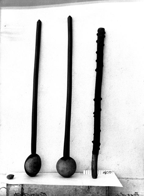 Two Zulu clubs or knobkerries (amawisa), Kranskop, Umzinyathi district, KwaZulu-Natal, South Africa and a Zulu girl's dancing stick of umnungumabele or knophout or woodland knobwood, Fagara capensis, Pietermaritzburg, KwaZulu-Natal, South Africa. Although Van Warmelo translates umnungambele as knoppiesdoring, it is actually the woodland knobwood or knophout, Fagara capensis, not the knoppiesdoring or knobthorn tree, Acacia nigrescens. In addition the knobs on the dancing stick are those of…