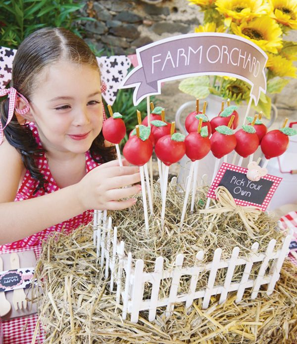 """Mini """"Farm Orchard"""" with homemade apple cake pops displayed in a stand covered with hay"""