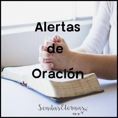 ALERTAS DE ORACIÓN  29/06/17  https://sendaseternas.blogspot.com.es/2017/06/alertas-de-oracion_30.html  https://www.puertasabiertas.org/hacer/orar/Alertas_oracion/Alertas20170629  #alertasoracion #urgente #cristianosperseguidos #puertasabiertas #sépartedelarespuesta #ora #Sendasesternas