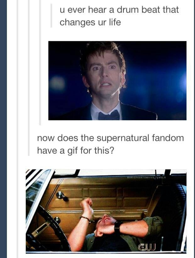 At first I thought it said HOW does the supernatural fandom have a gif for this, and I thought the next gif was Dean laughing hysterically. I was almost about to yell, THAT'S DOCTOR WHO NOT SUPERNATURAL! and then I realized it said now. Not how.