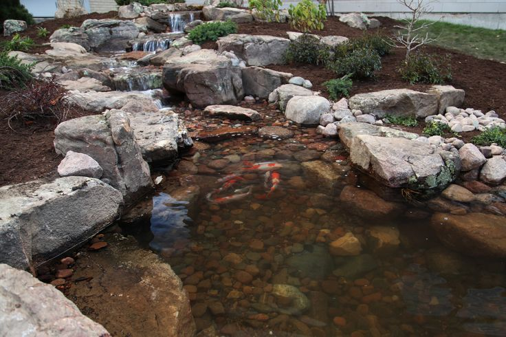 Image result for how to rock in a fish pond vatten for Koi pond builders greenville sc