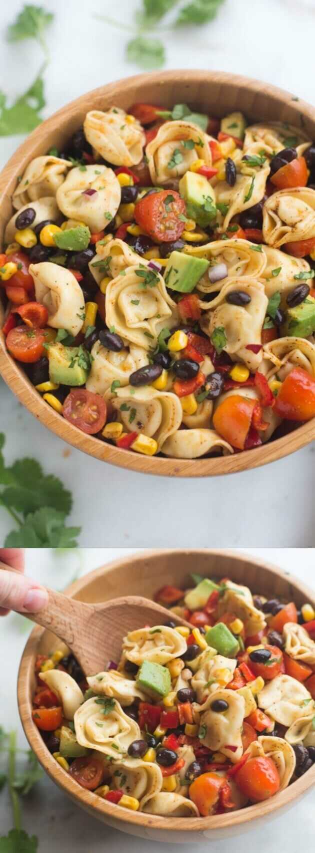 This Southwest Tortellini Pasta Salad from Tastes Better From Scratch is a fresh and easy pasta salad that's ready in less than 30 minutes! It's loaded with fresh veggies and coated in a deliciously simple and healthy southwest dressing!