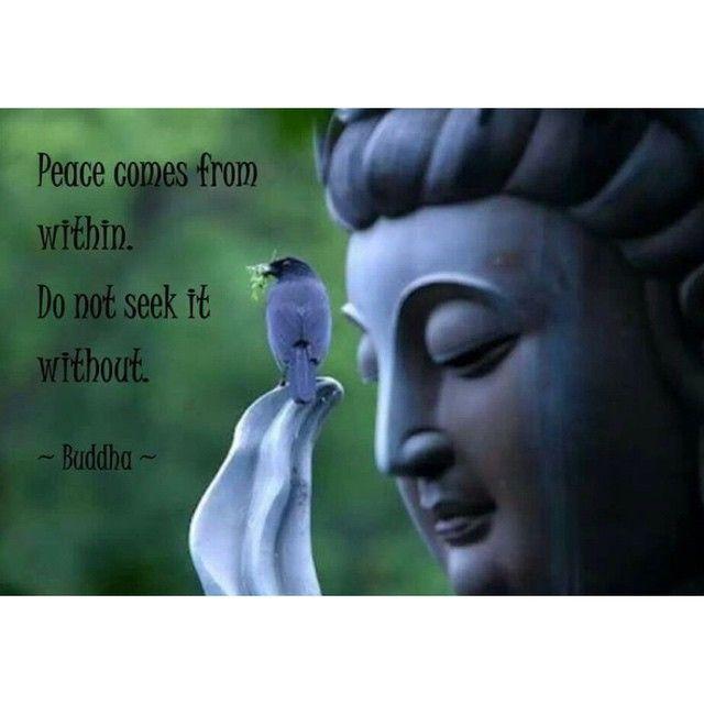 """""""Mír přichází zevnitř, nehledejte jej vně"""" - Buddha. U zdravého člověka je v míru a v rovnováze tělo, duše i mysl. Nemůžeme oddělit psychiku od těla. Je nezbytně nutné, abychom pracovali na své vnitřní rovnováze, abychom žili zdravě a rostli. S námi naleznete rovnováhu. Web & Blog již brzy, sledujte nás ať jej nezmeškáte!  www.zensystem.cz"""