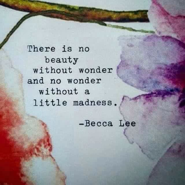 There is no beauty without wonder and no wonder without a little madness. -Becca Lee