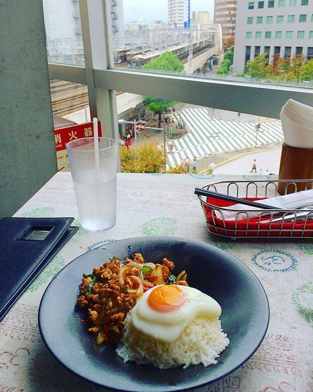 今日の午後は予定があってお出かけなので、ついでに茶屋町のモンスーンカフェでランチ✨ 窓からは阪急電車が見えて素敵です 初めてのモンスーンカフェは20年くらい前?の代官山店でした。ロンバケのロケ地の。時代を感じる… * * * #茶屋町 #中津 #梅田 #モンスーンカフェ #ガパオライス #タイ料理 #エスニック料理好き #ランチ #最近ガパオライスばっかり