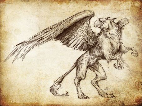 Pics For > Gryphon Concept Art