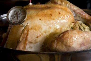 Safely Cooking Whole Turkey or Whole Turkey Breast: Turkey with Thermometer