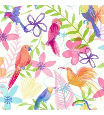 Papel pintado con loros de colores vivos juveniles - 40798