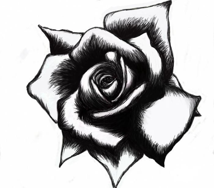 Black And White Heart Tattoos Designs | Cool Tattoos Designs ...
