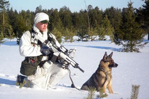 http://soldados.tumblr.com