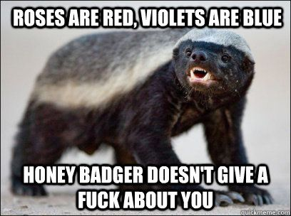 Honey badger doesn't give a fuck about you.