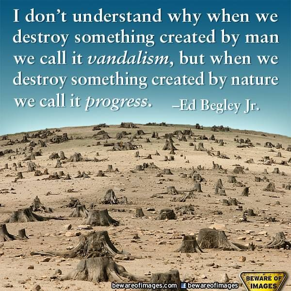 10 best environmental sustainability images on pinterest when we destroy sonething made by man we call it vandalism when we destroy something made by nature we call it progress ed begley jr fandeluxe Images