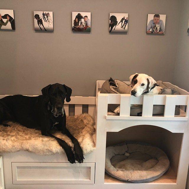 Custom Dog Bunk Bed Or Cat Castle Dog Bunk Beds Dog Bedroom Custom Dog Beds